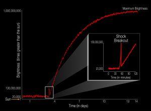 Das Diagramm illustriert die Helligkeitsentwicklung einer Supernova im Vergleich zu unserer Sonne. Erstmals konnte der Lichtblitz einer Supernova-Schockwelle im sichtbaren Wellenlängenbereich beim Durchbruch an der Sternenoberfläche beobachtet werden. Die Supernova des Sterns KSN2011d erreichte nach 14 Tagen ihre maximale Helligkeit. Der Lichtblitz zu Beginn der Supernova dauerte nur etwa 20 Minuten. Allein seine Erfassung ist ein astronomischer Meilenstein. KSN2011d war vor seiner Explosion 20.000 Mal heller als die Sonne. Der Lichtblitz, ein Ergebnis der Energieentladung im zusammenbrechenden Kern als Auslöser der Supernova-Explosion, übertraf die Sonnen-Helligkeit um das 130-Millionenfache. Die Supernova selbst hatte ihr Maximum beim 1-Milliardenfachen der Sonnenhelligkeit. (Bild: NASA Ames/W. Stenzel)