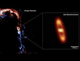 """Diese Falschfarbenaufnahme zeigt die Akkretionsfilamente um den Protostern [BHB2007] 1. Die großen Strukturen sind Ströme von molekularem Gas (CO), das die zirkumstellare Scheibe um den Protostern speist. Der Ausschnitt zeigt die Staubemission der Scheibe von der Seite gesehen. Die """"Löcher"""" in der Staubkarte stellen einen enormen ringförmigen Hohlraum dar, der (von der Seite) in der Scheibenstruktur zu sehen ist. (Bild: MPE)"""