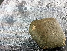 Oued Awlitis 001 Meteorit. (Bild: NHM Wien, Ludovic Ferrière)