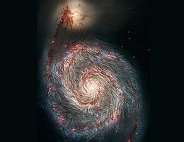 Von SOFIA beobachtete Magnetfeldlinien, die über ein Foto der Whirlpool-Galaxie M51 des Hubble-Weltraumteleskops der NASA gelegt sind. Die Infrarotaufnahme von SOFIA zeigt, dass die Magnetfelder in den äußeren Armen nicht der Spiralform der Galaxie folgen, sondern stattdessen verzerrt sind. Die intensive Sternentstehungsaktivität in den äußeren Armen (in rot dargestellt), könnte dieses magnetische Chaos zusammen mit den Kräften der Begleitergalaxie NGC 5195 verursachen, die an einem der Spiralarme zerrt. (Bild: NASA, das SOFIA Wissenschaftsteam, A. Borlaff; NASA, ESA, S. Beckwith (STScI) und das Hubble Heritage Team (STScI/AURA))