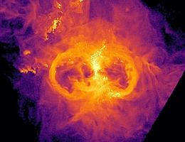 Gasdichte rund um eine massereiche Zentralgalaxie in einer Galaxiengruppe im virtuellen Universum der TNG50-Simulation. Das Gas im Inneren der Galaxie entspricht der hellen vertikalen Struktur und bildet eine Gasscheibe. Links und rechts von der Struktur befinden sich Blasen - Regionen, die in diesem Bild wie Kreise aussehen, mit deutlich reduzierter Gasdichte im Inneren. Diese Geometrie des Gases ist auf die Wirkung des supermassereichen Schwarzen Lochs zurückzuführen, das sich im Zentrum der Galaxie verbirgt, das Gas vorzugsweise in Richtungen senkrecht zur Gasscheibe der Galaxie ausstößt und dabei Regionen mit geringerer Dichte erzeugt. (Bild: TNG Collaboration/Dylan Nelson)