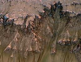 Das Bild zeigt Strömungen, die im Frühjahr und Sommer an einem Hang im Newton-Krater des Mars auftreten. (Bild: NASA/JPL-Caltech/Univ. of Arizona)